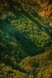 Mountains in Crimea Royalty Free Stock Photos