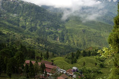 Mountains, Darjeeling, West Bengal, India Royalty Free Stock Photo