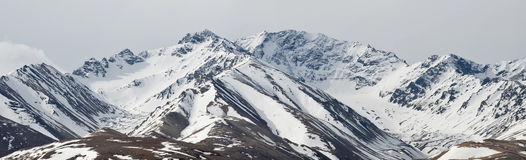 Mountains of Denali Alaska. A panoramic view of mountains in Denali National Park, Alaska, including the foothills of Mt. McKinley Royalty Free Stock Photography