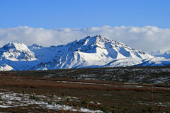 Mountains Denali National Park. Snow covered mountains in May royalty free stock photography