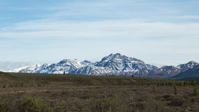 Mountains in Denali National Park Royalty Free Stock Images