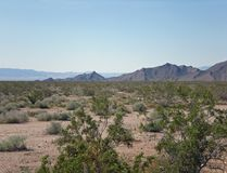 Mountains and Desert Shrubs on a Clear Day royalty free stock photo
