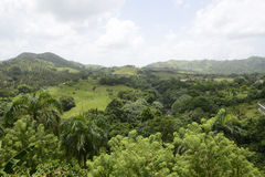 Mountains in the Dominican Republic Royalty Free Stock Image