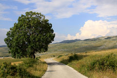 Mountains in Durmitor National Park, Montenegro Stock Photo