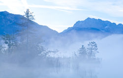 Mountains in early morning fog Royalty Free Stock Photography