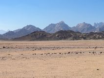 Mountains in the egypt desert. stock image