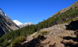 In the mountains of Elbrus Stock Photo