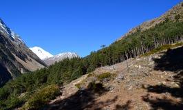 In the mountains of Elbrus. Near Mount Elbrus. The area of mount Elbrus – the Kabardino-Balkarian Republic. Photo taken on: November 3 Sunday, 2013 Stock Photo