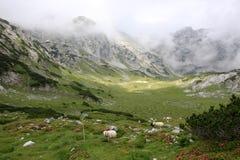 Mountains, Europe Royalty Free Stock Photos