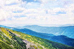 Mountains in Europe. Ukraine. Carpathians. Mountain trekking. Traveling in the mountains. Mountain views and landscapes, plants i stock photo