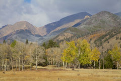 Mountains in Fall Stock Image