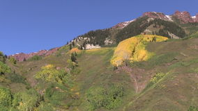 Mountains in Fall. Aspen groves on a mountainside in fall stock footage