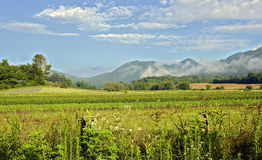 Mountains and Farm Royalty Free Stock Image