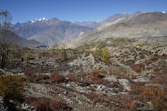 The mountains and fields in Annapurana Circuit Royalty Free Stock Photography