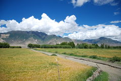 The mountains and fields. Tibet, located in the edge of a mountain in a large Stock Photo