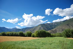 The mountains and fields. Tibet, located in the edge of a mountain in a large Royalty Free Stock Photos