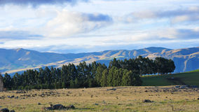 Mountains and fields at Waitaki Valley Stock Photography