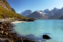 Mountains and fjord in Norway - Lofoten Royalty Free Stock Photography