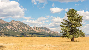 Mountains, Flatirons Vista Trail, CO Royalty Free Stock Images