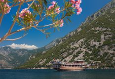 Mountains and flowers. Boat in the sea. Montenegro stock images