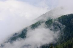 Mountains and fog. Mountains in fog, Olympic National Park, Washington Royalty Free Stock Photography