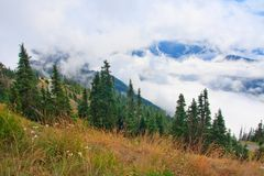 Mountains and fog. Mountains in fog, Olympic National Park, Washington Royalty Free Stock Image