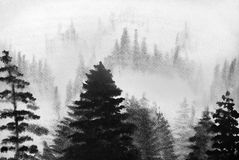 Mountains in the fog. Mountain pine trees and fog Stock Photo