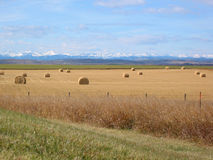 Mountains, Foothills, and Bales Stock Photos