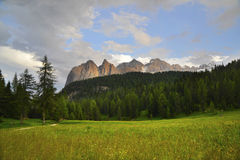 Mountains and forest Royalty Free Stock Photography