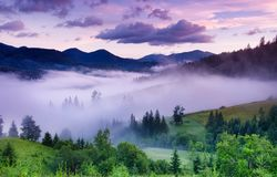 Mountains and forest in the fog. Beautiful natural landscape at the summer time during sunrise. Forest and mountains. Mountain landscape-image royalty free stock image