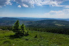Mountains and forest of  Harz in the sunlight , Germany Royalty Free Stock Photography