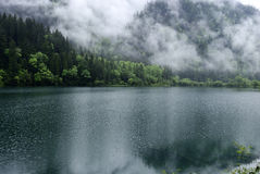 Mountains Forest and Lake Stock Photography