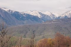 Mountains and forest in Sochi Royalty Free Stock Images