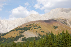 Mountains and forests Royalty Free Stock Photography