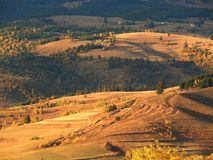 Mountains and forests. Close-up at sunset in Gheorgheni, Romania Stock Photos