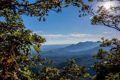Mountains framed through trees Royalty Free Stock Photo