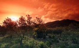 mountains in french Catalonia Royalty Free Stock Images