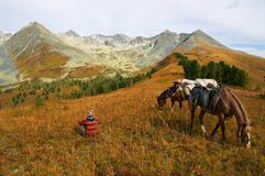Mountains, girl and two horses. Altay Royalty Free Stock Photo