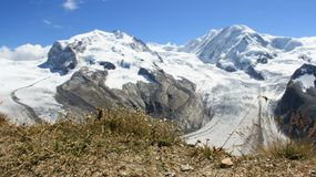 Quiet And Pure Glacier Landscapes With Wild Flowers In Sunny Day. Mountains and glacier view matterhorn glacier paradise in summertime with warm sunshine and Royalty Free Stock Image