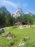 Mountains of Gosau, Austria. In summer Stock Photo