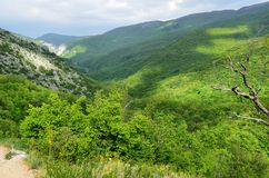 The mountains of the Grand canyon of the Crimea, Russia. The mountains of the Grand canyon of the Crimea Royalty Free Stock Photography