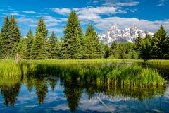 Mountains in Grand Teton National Park with reflection in Snake River. Grand Teton Mountains from Schwabacher`s Landing on the Snake River at morning. Grand Royalty Free Stock Photography