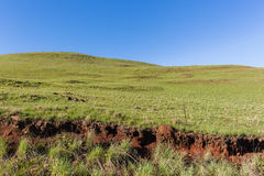 Mountains Grass Hillside. Mountains green grass hillside scenic summer blue landscape Royalty Free Stock Image