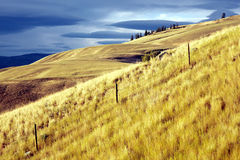 Mountains and grasslands of the Okanagan Stock Photo