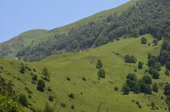 Mountains of the Greater Caucasus in Ilisu natural reserve, North-western Azerbaijan. Ä°lisu is a village and municipality in the Qakh Rayon of Azerbaijan. It royalty free stock photo
