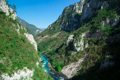 Mountains green forest nature landscape, river canyon Stock Photography