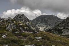 Mountains. Green Mountains in Romania Stock Image