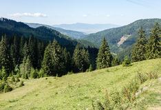 Mountains. Green Mountains in Romania Stock Images