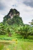Mountains with Green Trees in Krabi, Thailand Royalty Free Stock Photos
