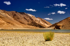 Mountains and green vegetation, Chagor tso - Lake ,Leh,Ladakh,Jammu Kashmir,India Royalty Free Stock Image